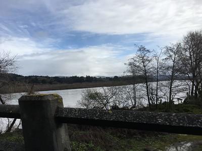The Eel River still has high flows, seen from Fernbridge. (Ruth Schneider - The Times-Standard)
