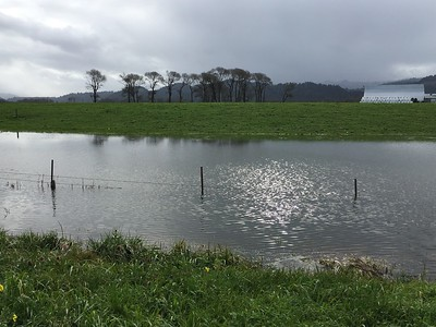 A barbed wire fence barely pokes above a flooded area along state Route 211 near Fernbridge. (Ruth Schneider - The Times-Standard)