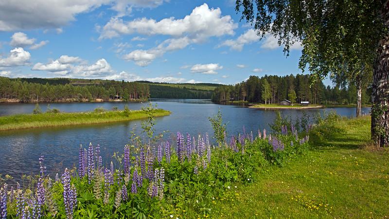 Kårböle by Ljusnan