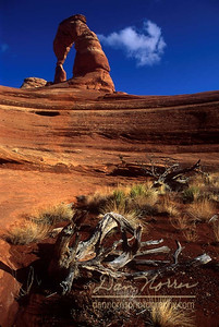 A different view of Delicate Arch.