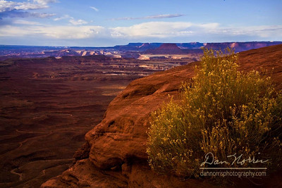 Green River Overlook.  Early morning
