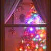 NWS-PT122514-tree05.jpg