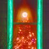 NWS-PT122514-tree04.jpg