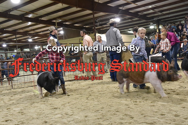 More stock show pics 1-18-17