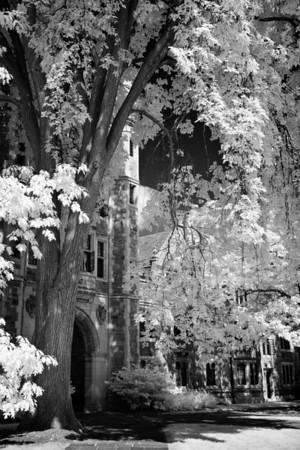 Law Quad - University of Michigan