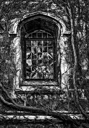 Law Quad Window.  Published in Shutterbug Magazine, January, 2012, Picture This, Pen & Ink, page 14.
