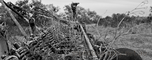An old, derelict disk plough. Overgrown with weeds, grass and small bushes.