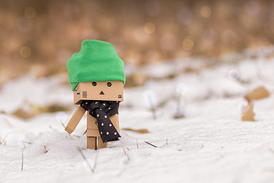 Danbo in Winterland.