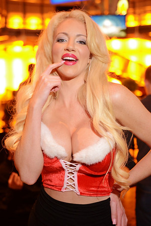 Playboy model Nicolette Shea at Sully's Sexy Santa Party Friday night. December 20, 2013.