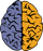 Brain-(opaque-40px)