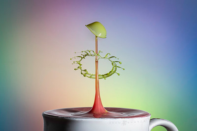 Liquid Sculpture.