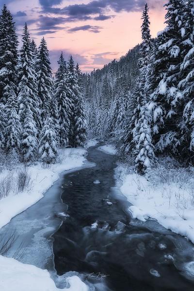 Winter's Whisper.