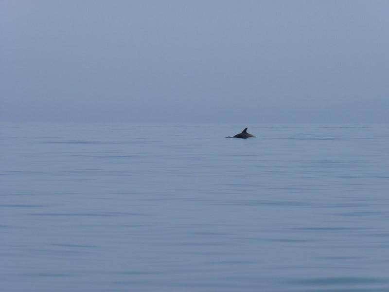 Near Cape Vani, 5 May 2010