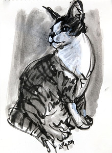 Baxter (study), ink and wash on paper, 8.5 x 11 in., 2019
