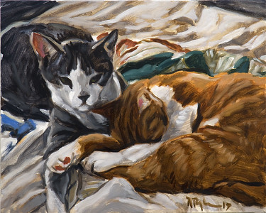 Two Cats, oil on canvas, 16 x 20 in., 2017