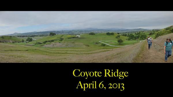 Coyote Ridge Hike - Santa Clara County