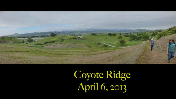 Coyote Ridge Hike - Santa Clara County