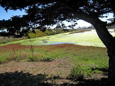 Moss Landing 9-30-09  5