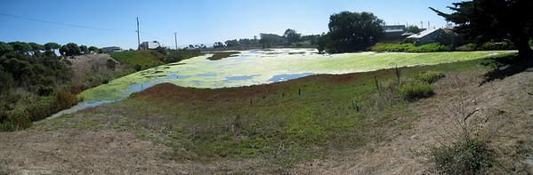 Moss Landing 9-30-09  6