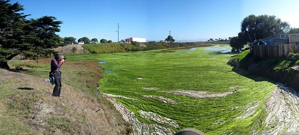 Moss Landing 9-30-09  8