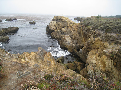Point Lobos 8:2009 15