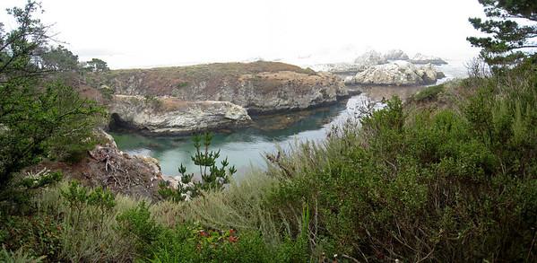 Point Lobos 8:2009 2