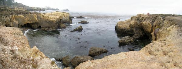 Point Lobos 8:2009 18