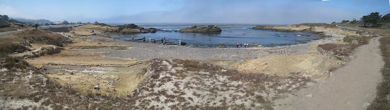 Point Lobos 8:2009 20