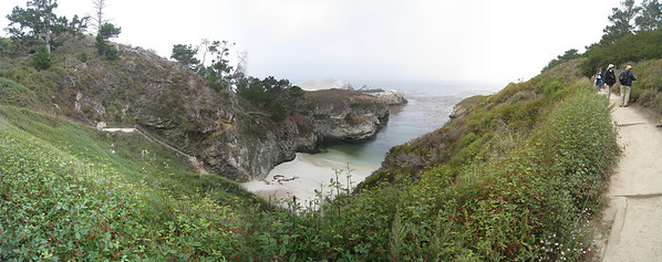 Point Lobos 8:2009 1