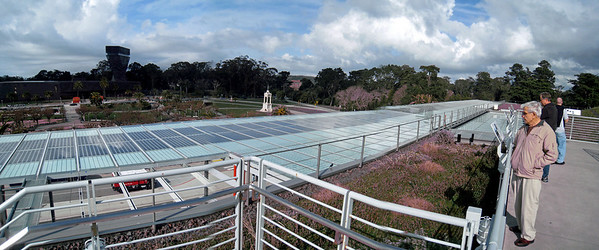 San Francisco 02-06-2010 20