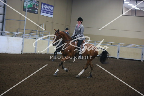 Canter Pictures