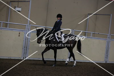 All Breed WalkTrot Hunt Seat on the Flat Equitation 11 years  under