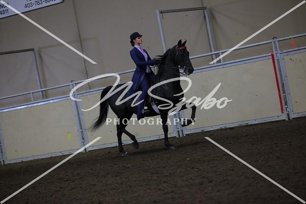 CMHA Saddle Seat equitation 17 years & under