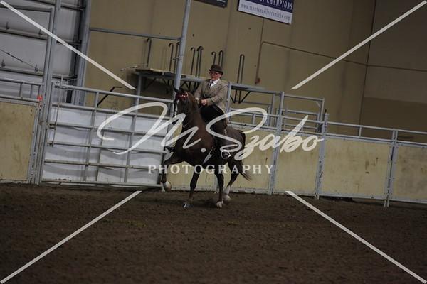 Morgan Classic Pleasure Saddle Ladies