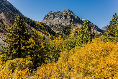 Fall Color Trip Oct 2017