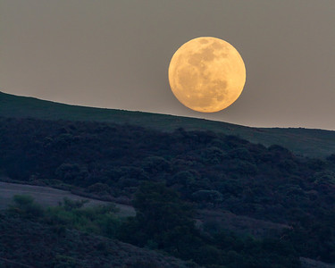 Full Moon Rise March 2014