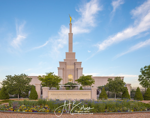 Morning Tranquility | Albuquerque New Mexico Temple