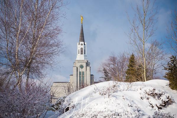 Morning Snow Horizontal Boston Massachusetts Temple