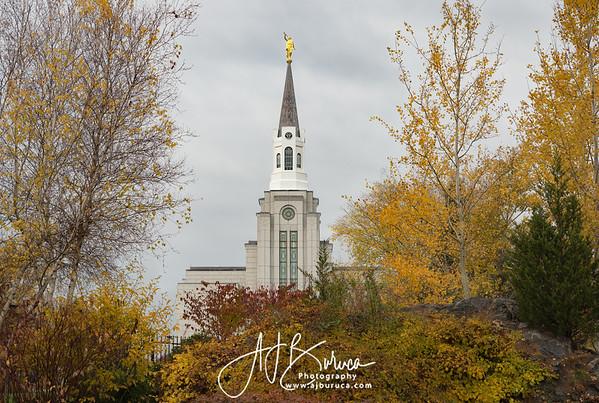 Autumn Leaves Boston Massachusetts Temple