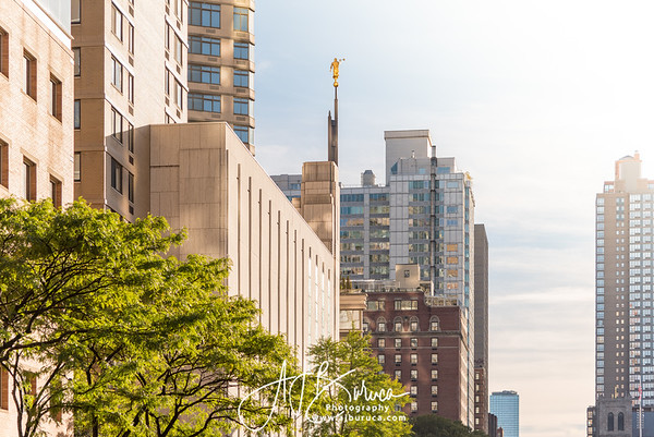 Golden Horizontal Manhattan New York Temple