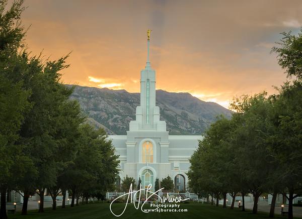 Morning Glory Mount Timpanogos Temple