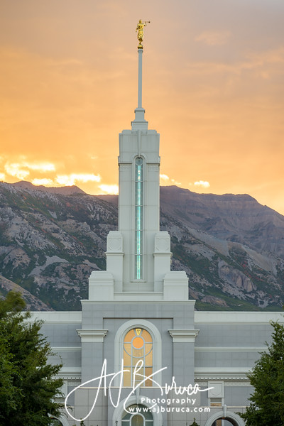 Morning Glory Vertical Mount Timpanogos Temple