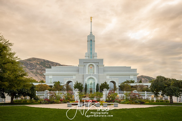Golden Morning Mount Timpanogos Utah Temple