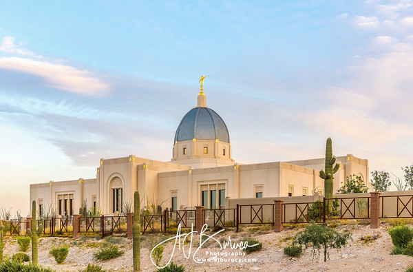 Peaceful Morning Tucson Arizona Temple