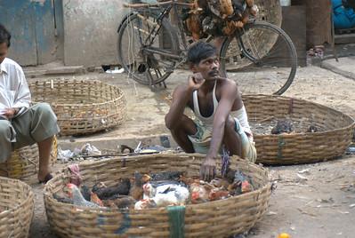 Calcutta (6 of 49).jpg