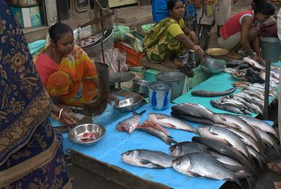 Calcutta (33 of 49).jpg
