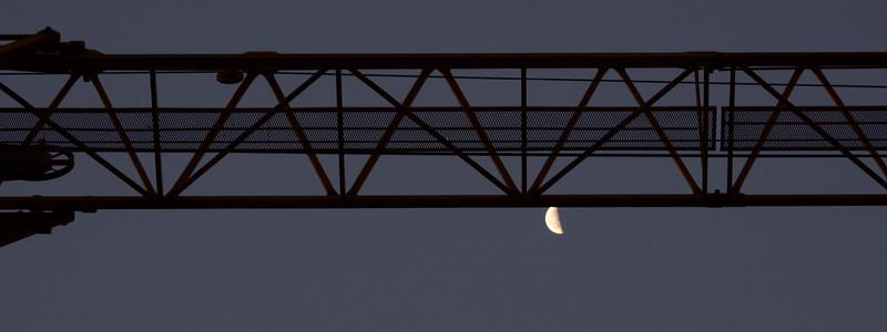 Morning crane 8-25-16