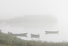 Looking towards barge docks on a foggy morning.