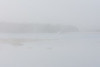 Polar Princess tour boat across the river on a foggy mornng.