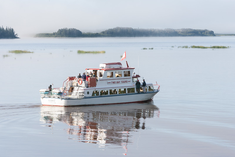 Tour boat Polar Princess as fog lifts. 2006 August 31st.